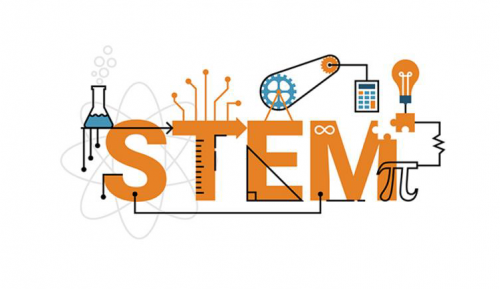 FREE STEM workshop